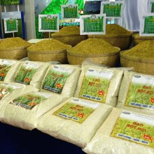 Máy Đóng Gói Gạo