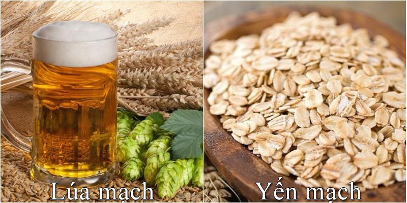 Lúa mạch là một trong những loại ngũ cốc được tiêu thụ rộng rãi nhất trong chế độ ăn uống của người Mỹ có thể thay bữa ăn sáng mà vẫn đầy chất dinh dưỡng và tốt cho sức khỏe. Loại hạt đa năng này có vị hơi chát và hương vị hạt dẻ có thể bổ sung vào nhiều món ăn. Đồng thời được cho là cung cấp nhiều lợi ích sức khỏe cho cơ thể con người trong xã hội hiện đại ngày nay.  Lúa mạch là một trong những loại ngũ cốc được tiêu thụ rộng rãi trên toàn thế giới, tuy nhiên khá xa lạ ở Việt Nam. Có rất nhiều loại ngũ cốc được mọi người ưa chuộng vì độ dinh dưỡng và hương vị thơm ngon, trong đó phải kể đến lúa mạch. Vậy lúa mạch là gì? Lúa mạch có tác dụng gì? Vậy hãy cùng An Thành tìm hiểu chúng qua bài viết dưới đây nhé!  Có bao nhiêu loại lúa mạch khác nhau? Lúa mạch đen hay hắc mạch thuộc chi Secale (bao gồm cả loài được gieo trồng có danh pháp Secale cereale). Đại mạch thuộc chi Hordeum (bao gồm cả loài được gieo trồng có danh pháp Hordeum vulgare) Triticum là lúa mì hay tiểu mạch. Yến mạch, thuộc chi Avena Tiểu hắc mạch (lai ghép giữa lúa mì và hắc mạch) hay × Triticosecale. Lúa mạch là gì?  - Lúa mạch tiếng anh là barley, có tên khoa học là Hordeum vulgare L thuộc họ Lúa.  Lúa mạch thuộc dạng cây thảo, rễ lúa dạng sợi. Thân cây lúa mạch to, mọc đứng cao 50 – 100 cm. Lá phẳng, ráp, lưỡi bẹ ngắn. Bông lúa mạch nhỏ, đều sinh sản xếp trên 4 dãy.  - Theo nhiều nghiên cứu cho thấy lúa mạch chứa nhiều vitamin nhóm B, sắt và chất xơ có tác dụng cực tốt đối với sức khỏe.  Sử dụng lúa mạch mỗi ngày giúp cơ thể khỏe mạnh hơn. Chính vì vậy lúa mạch được trồng để lấy hạt lúa mạch ăn và làm bánh mì lúa mạch, bánh quy lúa mạch, mầm được dùng để làm kẹo lúa mạch, chế rượu bia, làm mạch nha. Lúa mạch có tác dụng gì? Giúp cân bằng vi khuẩn đường ruột Một trong những cách tốt nhất để cân bằng vi khuẩn đường ruột là bổ sung các thực phẩm được làm từ lúa mạch. Nhiều cuộc nghiên cứu chỉ ra rằng: lúa mạch chứa nhiều hợp chất có lợi, giúp tăng sinh lợi khuẩn và tiêu diệt các hại khuẩn trong đường 